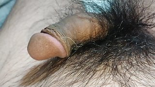 Normal penis   normal cock   normal  dick   . Butt hole.
