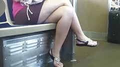 Hot Legs on the train