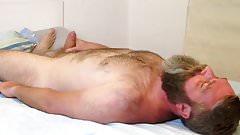 Bearded Bear Bed Cumming