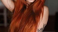 Precious Ginger 1528