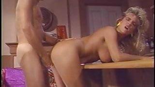 Guy fucks sexy Erica Boyer in the house
