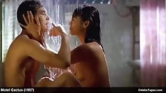 Asian Celebrity Jin Hui-Kyung Nude And Wild Sex Scenes