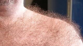 hairiest english bear