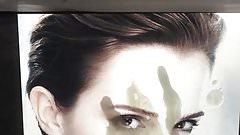 Tribute to Emma Watson 12