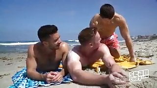 Gay Sex : Sean cody gay stars bareback