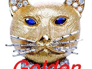 Free golden pussy slut pictures - Golden pussy