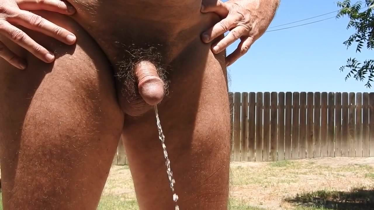 Free pissing cocks