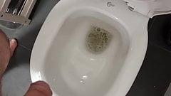 Pissing in the toilette
