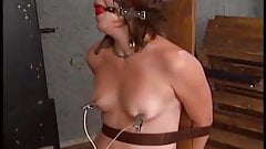 Electric torture of a naked woman