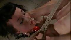 Hanging tied up emo slut gets fucked