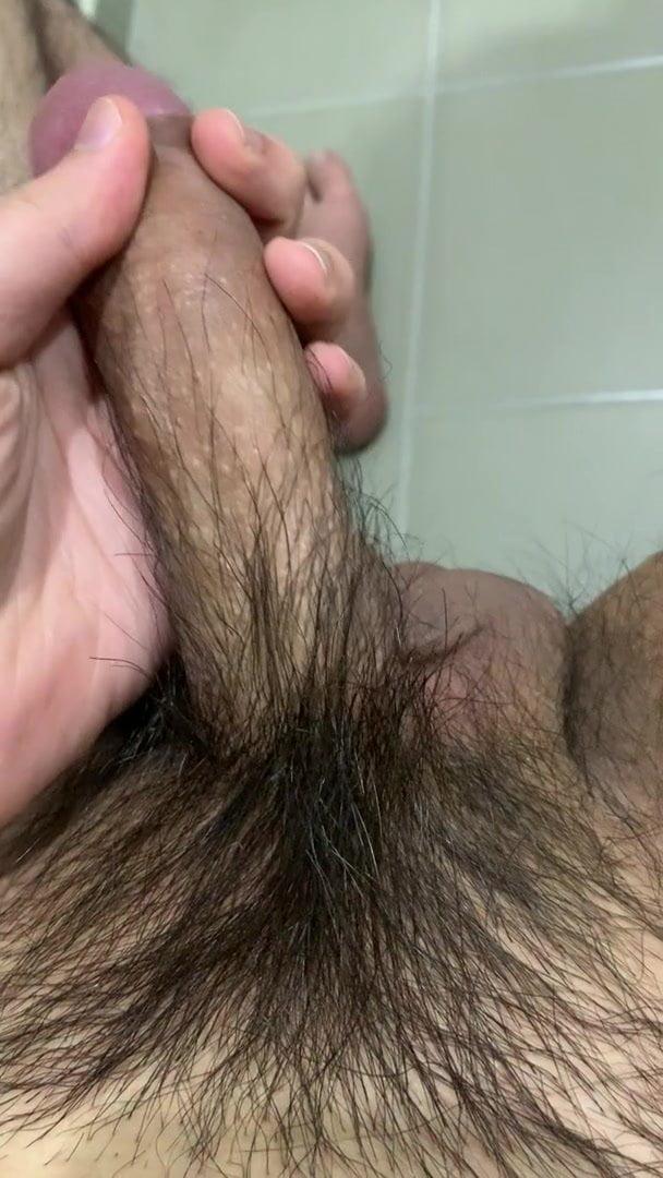 Asian Penis