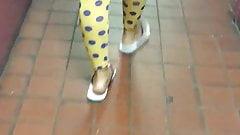 Yellow polka dot legging see through blue panties