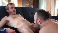 horse cock suck and swallow