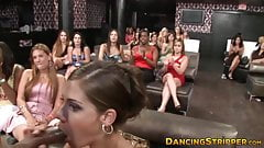 Glamorous party babes sucking strippers huge black cock