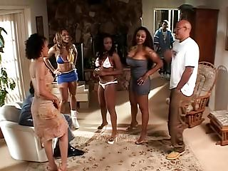 Sunset strippers star to fall Sucker for a dick sucker ready to fall