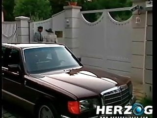 Ebony porn lesbians - Herzog videos classic retro porn lesbians and others fuck