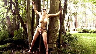 Milf with big boobs is tied to trees with a vibrator
