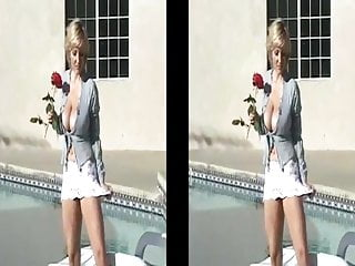 Ash vintage Danni ashe strips down at poolside split screen version