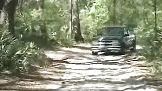 Bareback Ranger Station Bears
