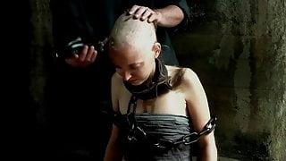 slave shave
