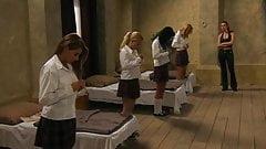 Dagmar Vejnar - Bound Heat: School OF Surrender