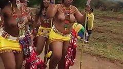 Dance wit tis chicks