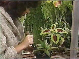 Vintage wood garden lanscaping rake Gardener admires melons