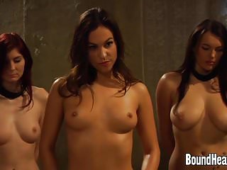 Big tits naked lesbians Two slaves naked in front of lesbian mistress