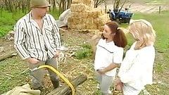 farming asses