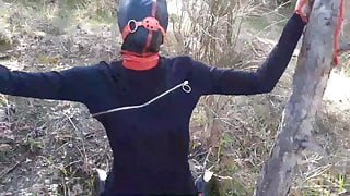 Tied up to a tree, outdoors in sexy clothes, ball gagged