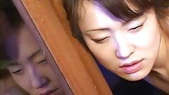 12-Mai Satsuki-Madam Papillon-2