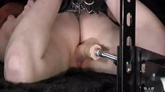 Bound Spanked and Penterated