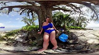 Island Tits (360 Spherical 2D)