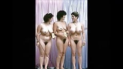 Teledysk - nagie kobiety 2
