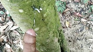 Indian big cock pissing in forest and Cumming cumshot