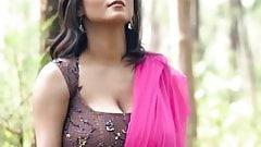 Maria Hot in Pink Saree