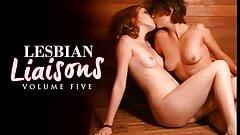 Celeb Lesbian Liaisons Vol.5 (Fullscreen)