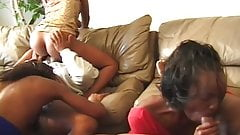 Hot Interracial Swing Sex Party