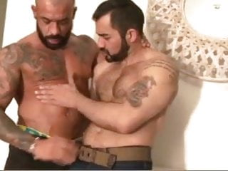 Otter porn gay Tough guys fuck