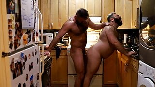 daddy bears fucking in the kitchen
