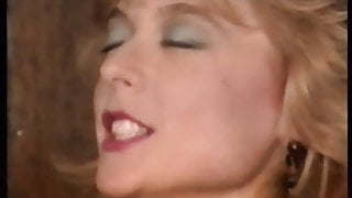 Nina Hartley – Battle Of The Stars 3 Stud Wars
