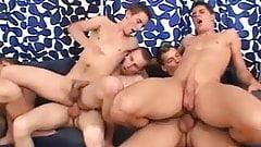 Six Twins   -  nial