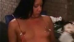 Pierce My Nipples