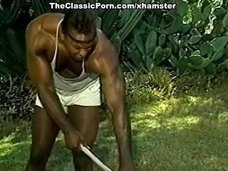 Gay masterbasion galleries - Classic pornstar gallery