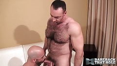 Muscle garanhão fodido cru por papai peludo bonito