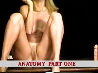 Handjob training How to eat pussy - sex-training