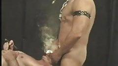 SHUNKS-BUTCH BUCK 1