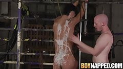 Big dick twink tied up and fingered during blowjob torment
