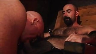 Hairy Hunks  w Ray Stone & Tim Kelly
