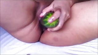 Mexican cucumber